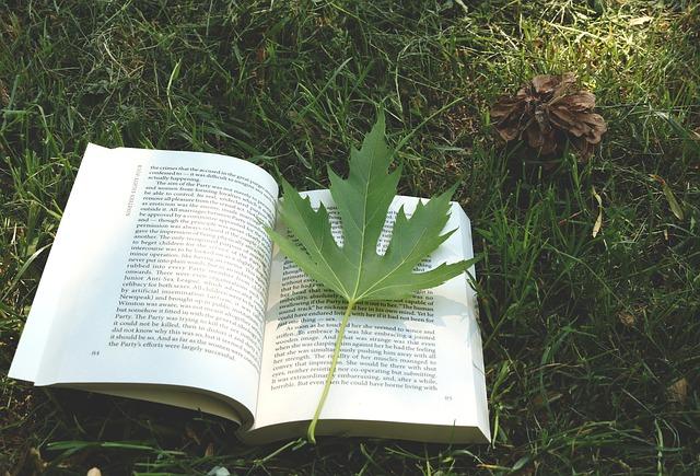 book-2432139_640